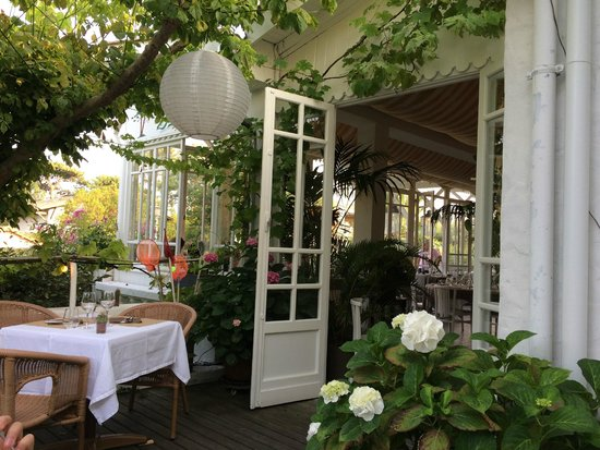 Hotel des Pins : Terrasse et véranda