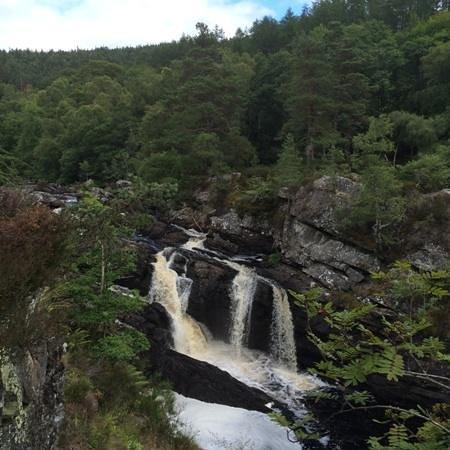 Rogie Falls : The Falls