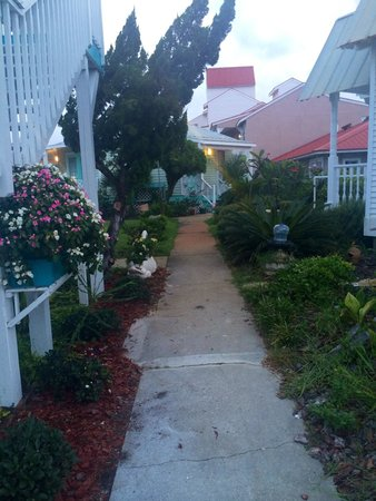 Driftwood Inn : Walkway to the cottages