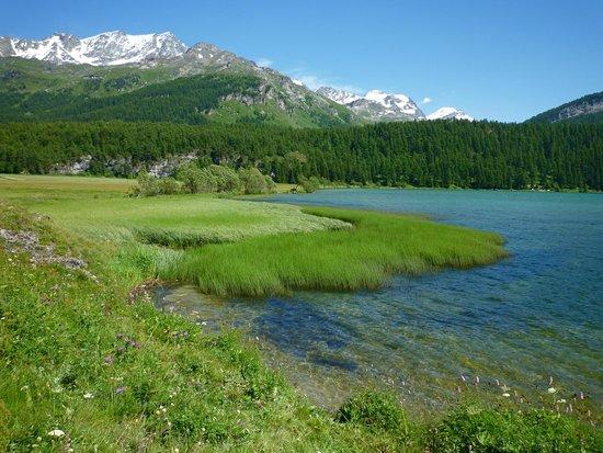 Lac de Sils - シルス・イム・エ...