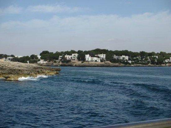 Barcos con fondo de cristal Starfish: Views from the boat