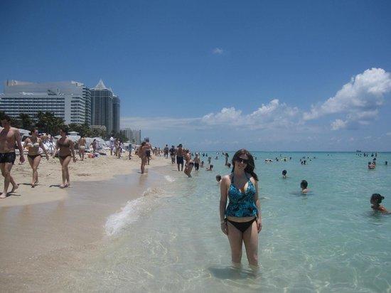 South Beach : the beach