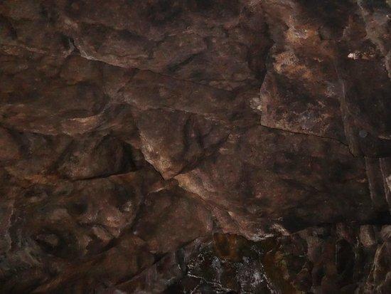 Cavernas del Viejo Volcan Parque Cerro Leones: Cueva