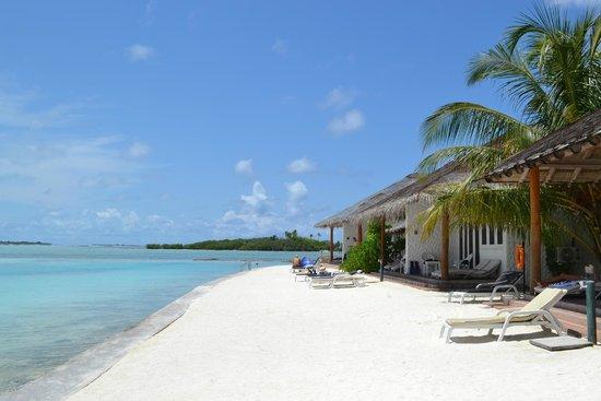beach villa picture of cinnamon dhonveli maldives. Black Bedroom Furniture Sets. Home Design Ideas