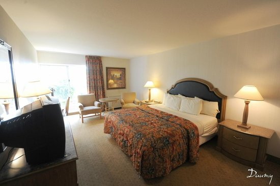 Golden Nugget Laughlin: la chambre