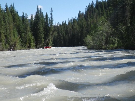 Panorama Vacation Retreat at Horsethief Lodge : River Rafting on Toby Creek