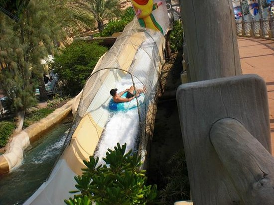 Wild Wadi Water Park : 上昇(逆流?)するスライダー