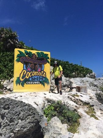 Coconuts Bar and Grill : coconuts