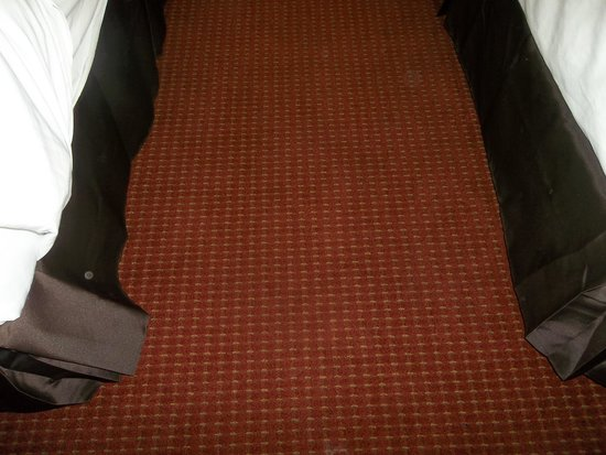 Microtel Inn & Suites by Wyndham Pooler/Savannah : carpet in between the beds