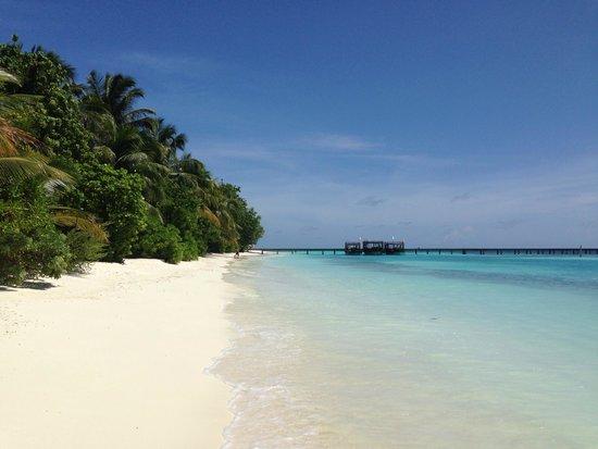Vakarufalhi Island Resort: Paradiso