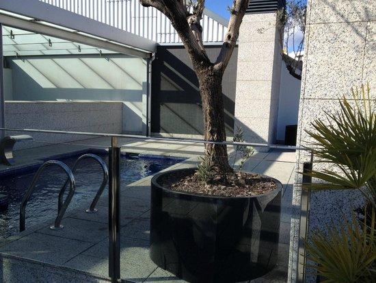 Suites Avenue: Zwembad-dakterras