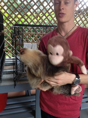 Sloth Sanctuary of Costa Rica: Our knowledgeable guide Jeff
