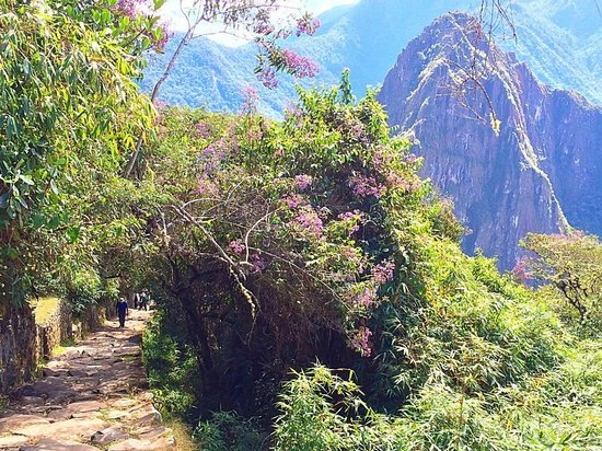 Amazing Peru : Hike to the Gate of the Sun