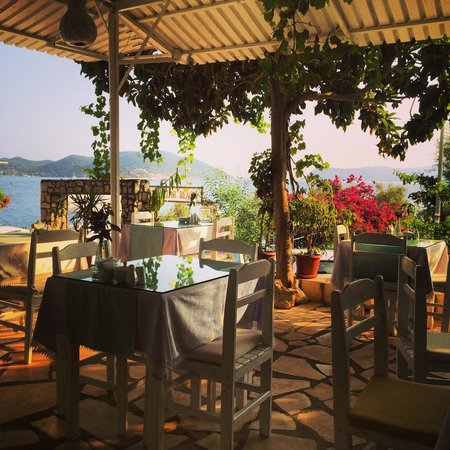Cakil Pension: The breakfast is really good in a very nice trace with view over to the Greece island Midili.