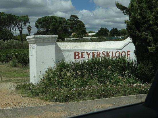Beyerskloof Tasting Room: Entrada