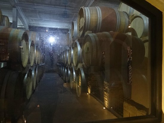 Beyerskloof Tasting Room: Barris à vista