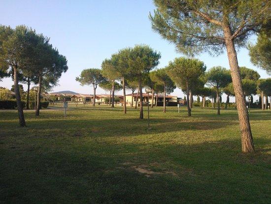 Resort Capalbio : Il parco, molto bello e curato