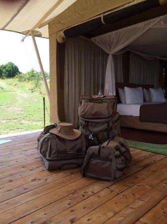 Serengeti Bushtops Camp: tent accommodation