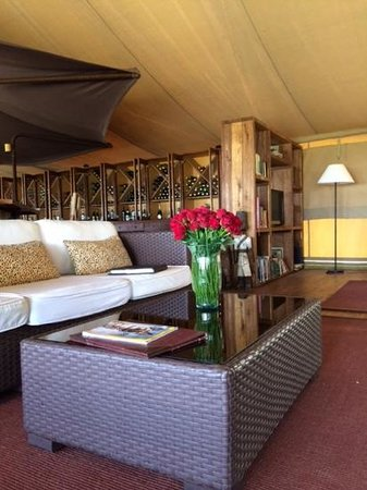 Serengeti Bushtops Camp: lounge