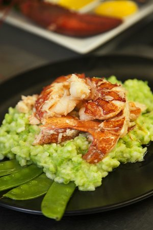 Scargo Cafe : Lobster & Sweet Pea Risotto