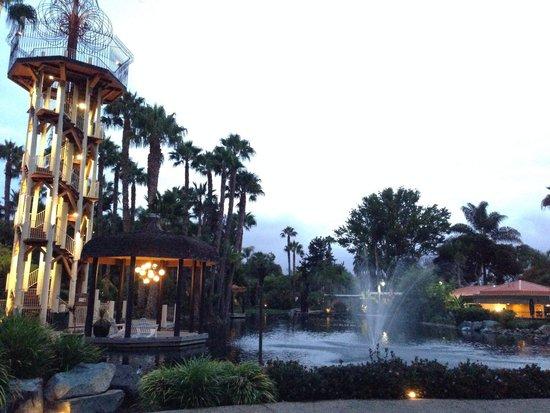 Paradise Point Resort & Spa: Lobby, Pool 6 a.m.