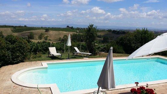 Tenuta Sant'Agnese : La piscina con vista sui vigneti