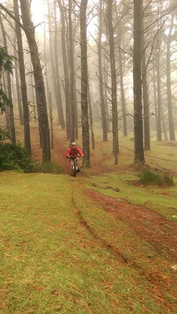 Lokoloko - Mountain Bike & Outdoor Tours: Downhill