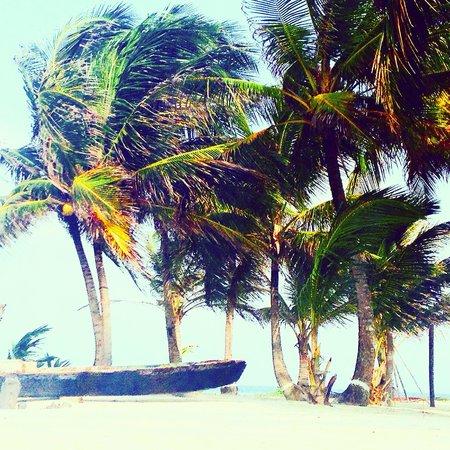 Carpe Diem Sailing and Yoga: A perfect day dreaming in San Blas