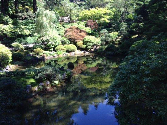 Portland Japanese Garden : Pond Garden