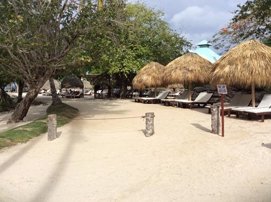Dreams La Romana Resort & Spa : Preffered club beach