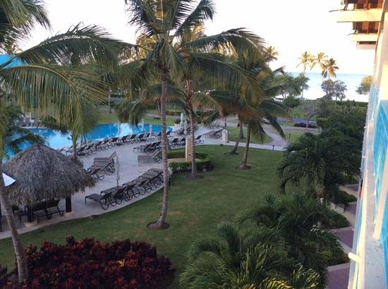 Dreams La Romana Resort & Spa : view from room 7333