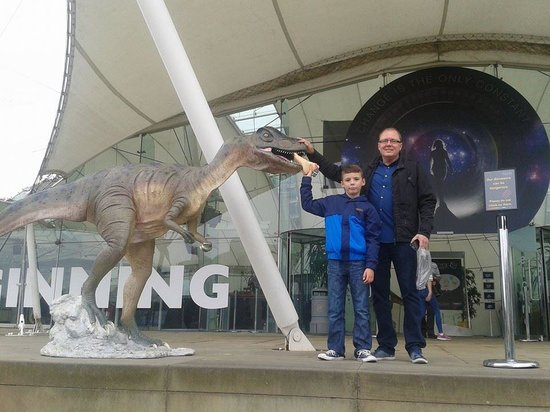 Dynamic Earth: Feeing the dinosaurs........