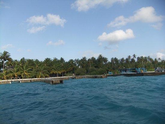 Meeru Island Resort & Spa : island