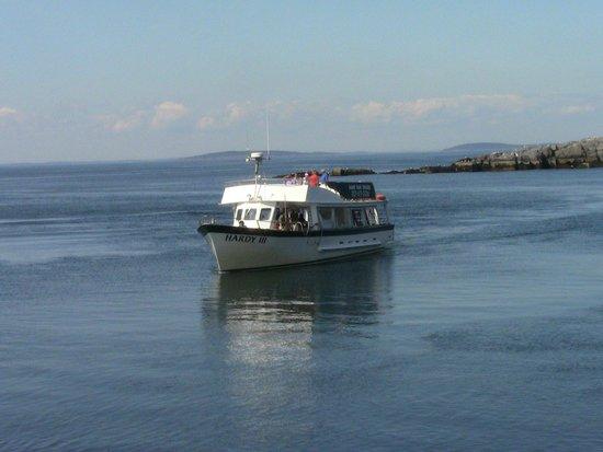 Hardy Boat Cruise: The Hardy III approaches the dock on Monhegan Island