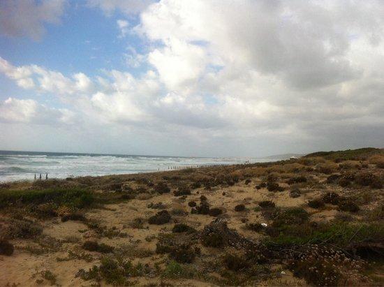 Villaggio Baia delle Mimose: La spiaggia