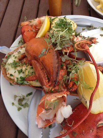 Amazing Lobster @ The Manor House at Quorn
