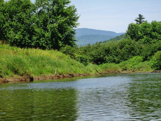 Canoe & Co.: Vue