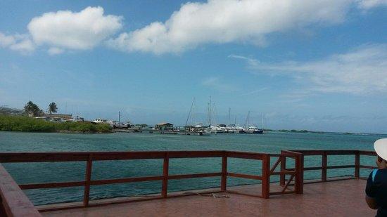 De Palm Island: En el muelle, antes de tomar el bote que lleva a la isla