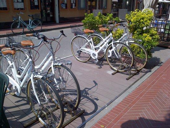 Hotel Garden: our bikes