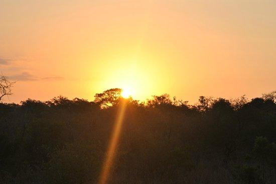 Serondella Game Lodge: Coucher de soleil sur Thornybush