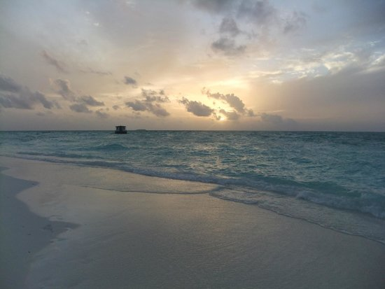 Meeru Island Resort & Spa : beach