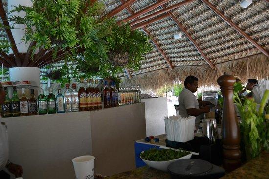 Paradisus Punta Cana Resort : Pool area Bar