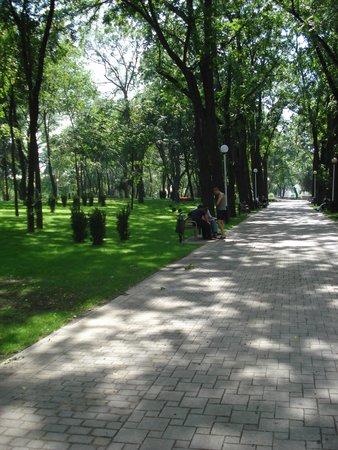 City Botanical Garden: Вид
