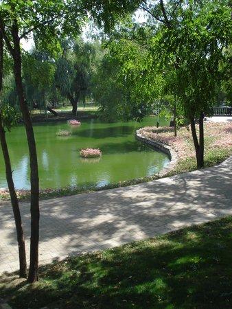 City Botanical Garden: вид2