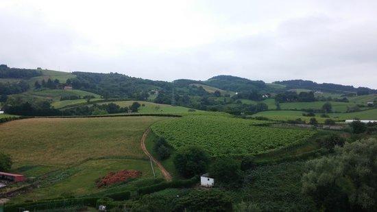 Hotel Rural Gaintza: Vistas desde la terraza