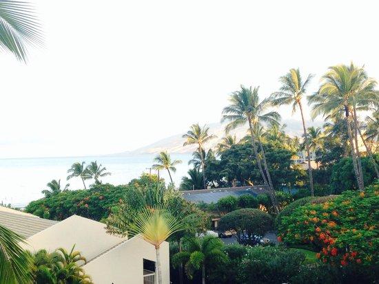 Maui Banyan Condos : Wake up every morning to this view!!