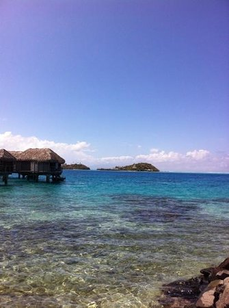 Sofitel Bora Bora Marara Beach Resort: vista mare