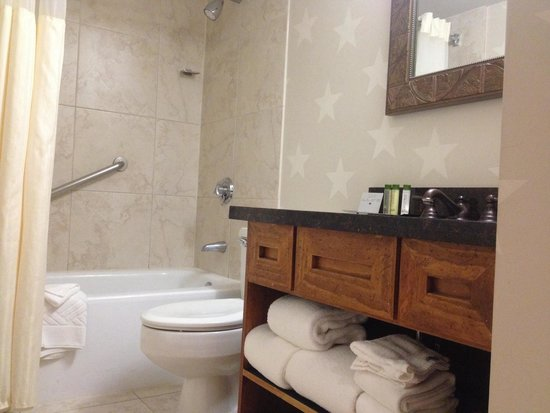 DoubleTree by Hilton Hotel Dallas - Campbell Centre: Clean and Well Situated Bathroom