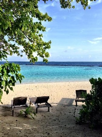 Royal Island Resort & Spa: View from our cottage