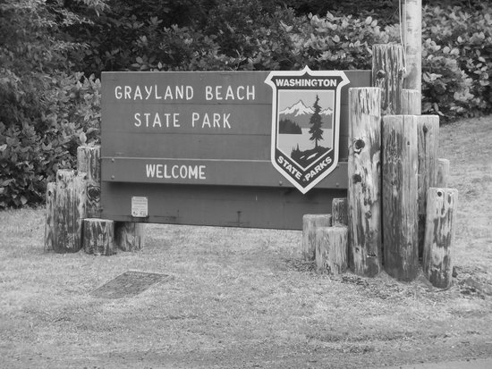 Grayland Beach SP